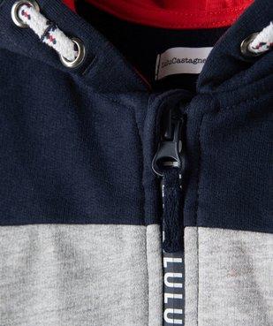 Sweat bébé garçon zippé à capuche – Lulu Castagnette vue3 - LULUCASTAGNETTE - Nikesneakers