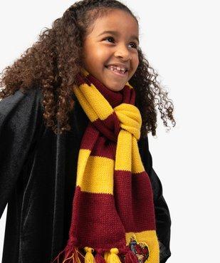 Écharpe Gryffondor déguisement Harry Potter vue1 - UNIVERSAL - GEMO