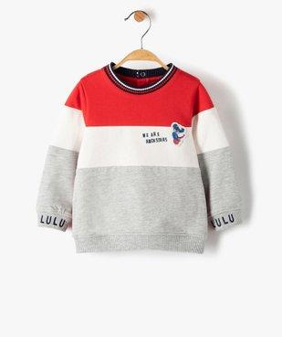 Sweat bébé garçon tricolore - Lulu Castagnette vue1 - LULUCASTAGNETTE - Nikesneakers