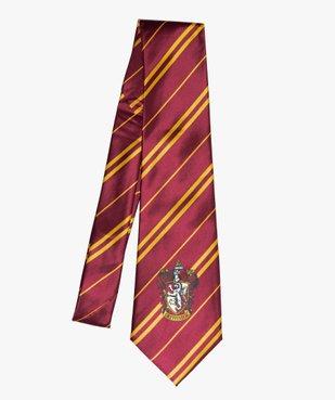 Cravate Gryffondor déguisement enfant - Harry Potter vue1 - UNIVERSAL - GEMO