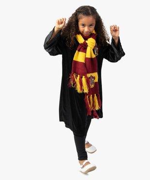 Écharpe Gryffondor déguisement Harry Potter vue4 - UNIVERSAL - GEMO