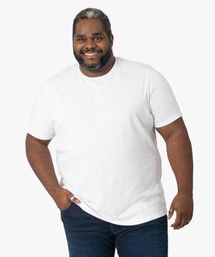Tee-shirt homme à manches courtes à rayures texturées vue1 - GEMO (G TAILLE) - GEMO